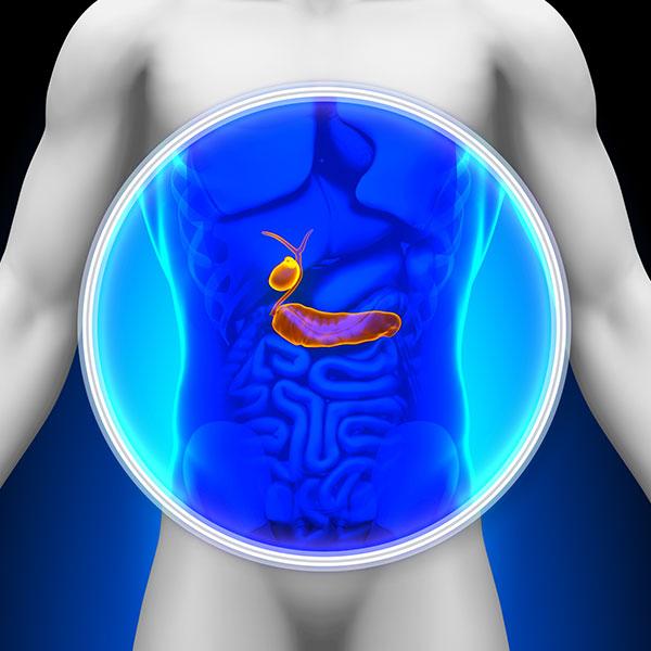 Improve Gallbladder Health Natural Solutions Drhardick