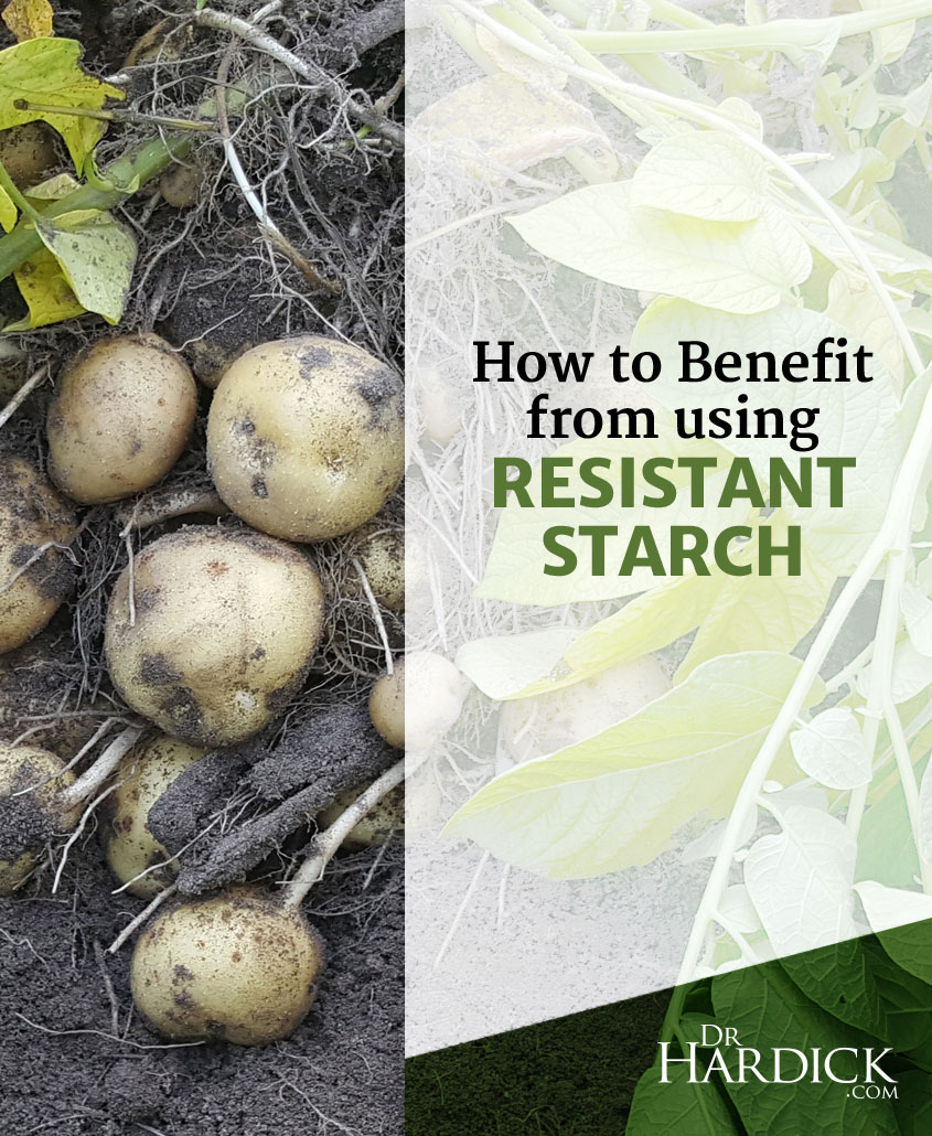 Resistant Starch: What It Is + Why You Can Benefit from Using It