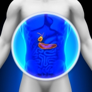 Living With or Without A GallBladder - Symptoms, Causes, & Natural Solutions For Poor Function